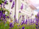 Salzburg: Das Grüne Bio-Hotel zur Post